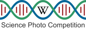 Logo_for_e-Science_Photo_Competition_v3